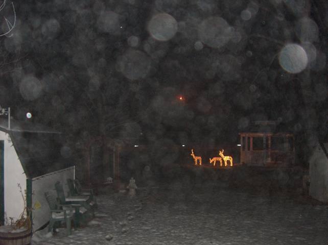 gazebo at night during a blizzard