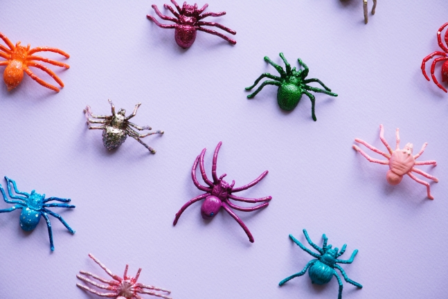 halloween home decor Spiders