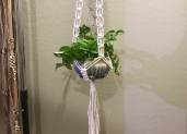 Seller feature: Holey Plant Hangers