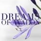 The Dreams Of Avalon