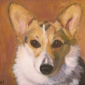 Pet Portraits by Deena